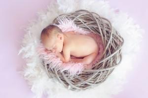 baby-cute-dream-34763